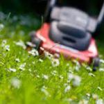 jardinage-guingamp