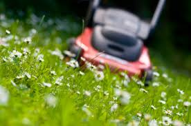 Notre service de jardinage